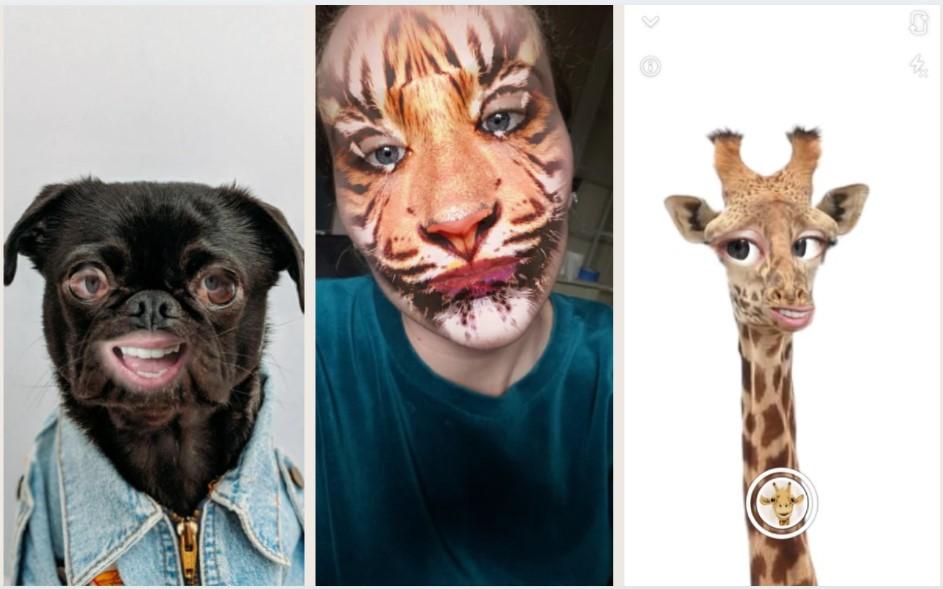 Snapchat Animal Filters